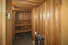 cat-1-sauna